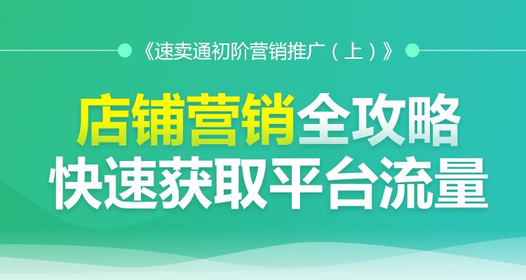 速卖通初阶营销推广(上)