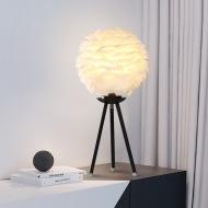 现代简约风,个性创意羽毛台灯