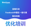 Facebook优化培训,一手资料+实操授课