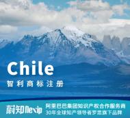 智利商标注册申请