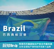 巴西商标注册申请