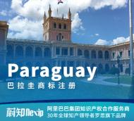 巴拉圭商标注册申请