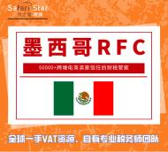墨西哥RFC注册+申报