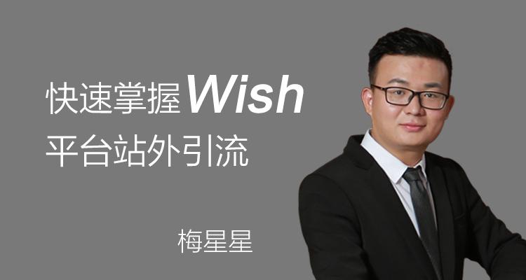(单节课)Wish站外营销