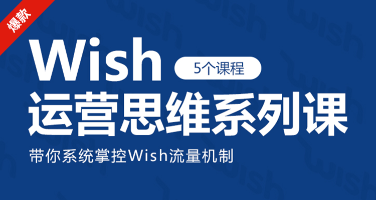 (单节课)Wish运营思维系列课