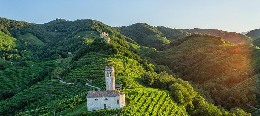 维多卡(Val D'Oca)- 来自意大利的顶级起泡酒