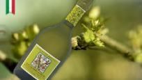 绿野仙踪起泡酒