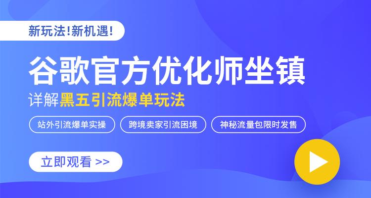 """谷歌官方优化师坐阵详解""""黑五""""""""网一""""的爆单玩法"""