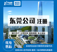 东莞公司  注册营业执照代办  代理记账报税
