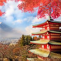 日韓觀望臺