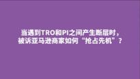 临时禁令(TRO)与初步禁令(PI)