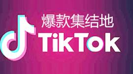 TikTok官方认证入驻通道
