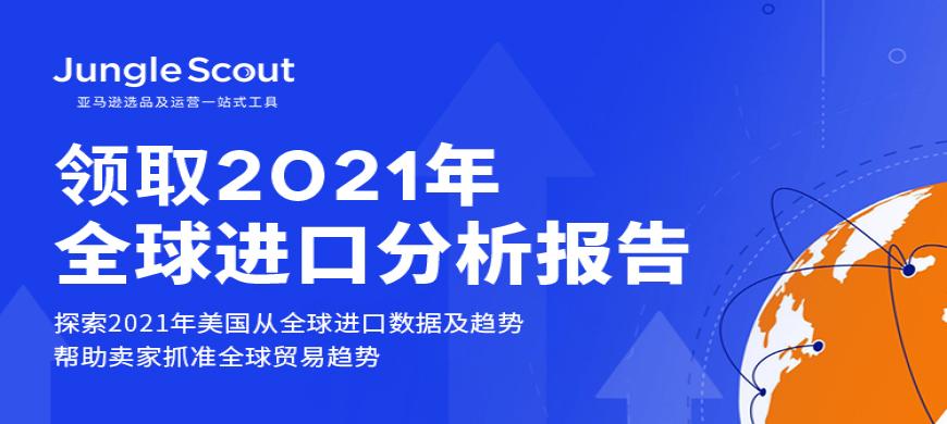 2021全球进口分析报告
