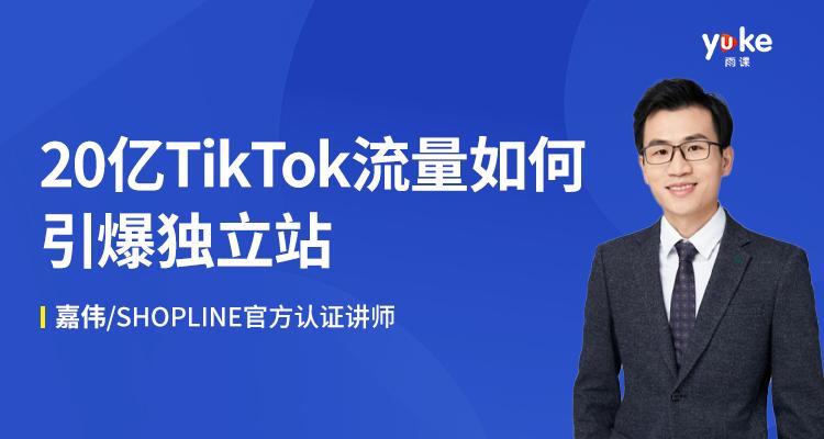 20亿TikTok流量如何引爆独立站