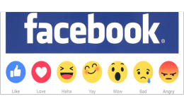 Facebook营销成本
