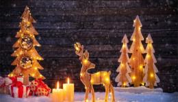 【TOP项目】旺季福利政策:圣诞预购促销正式开启!